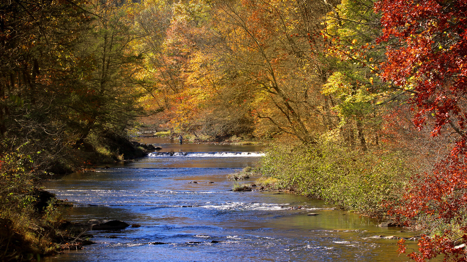 Southwest Michigan River