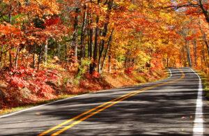 Southwest Michigan Fall Color Tour